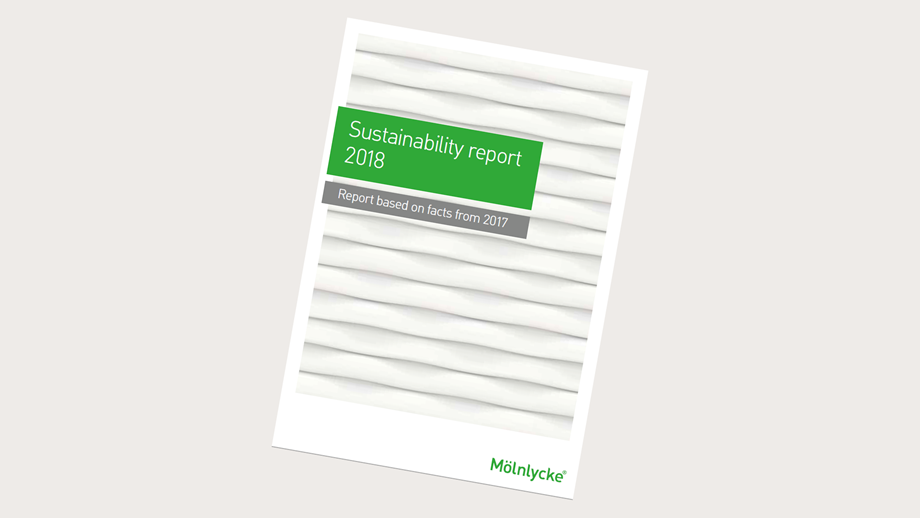 Our Sustainability report 2018