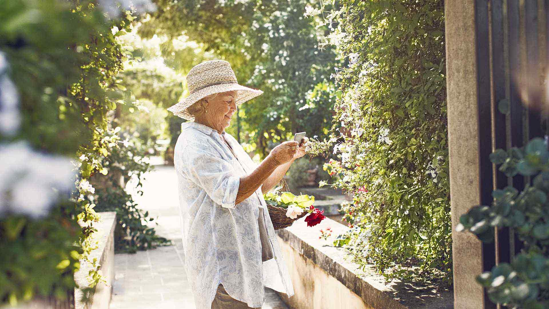 Elderly woman picking flowers in the garden